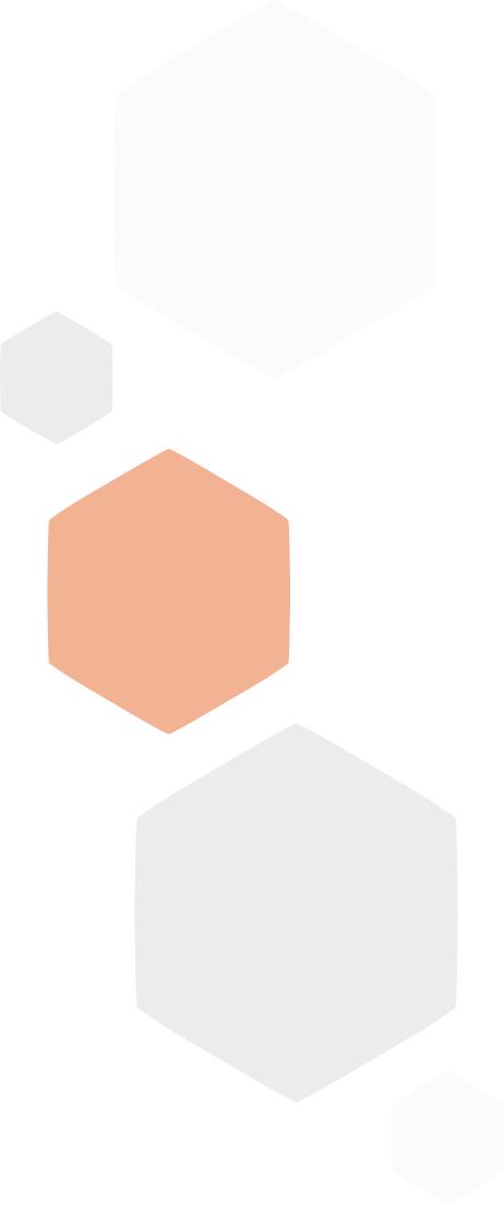 casestudy-hexagons